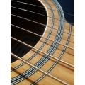 Žice za akustične gitare